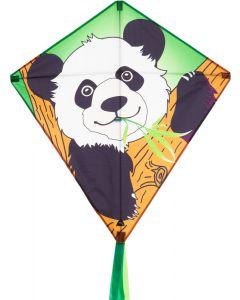 Eddy - Panda