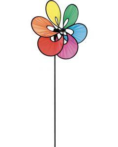 Paradise Flower Rainbow